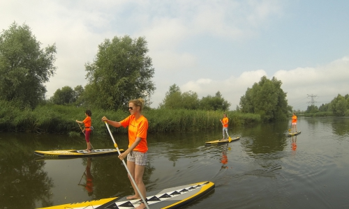 Watersafari Biesbosch